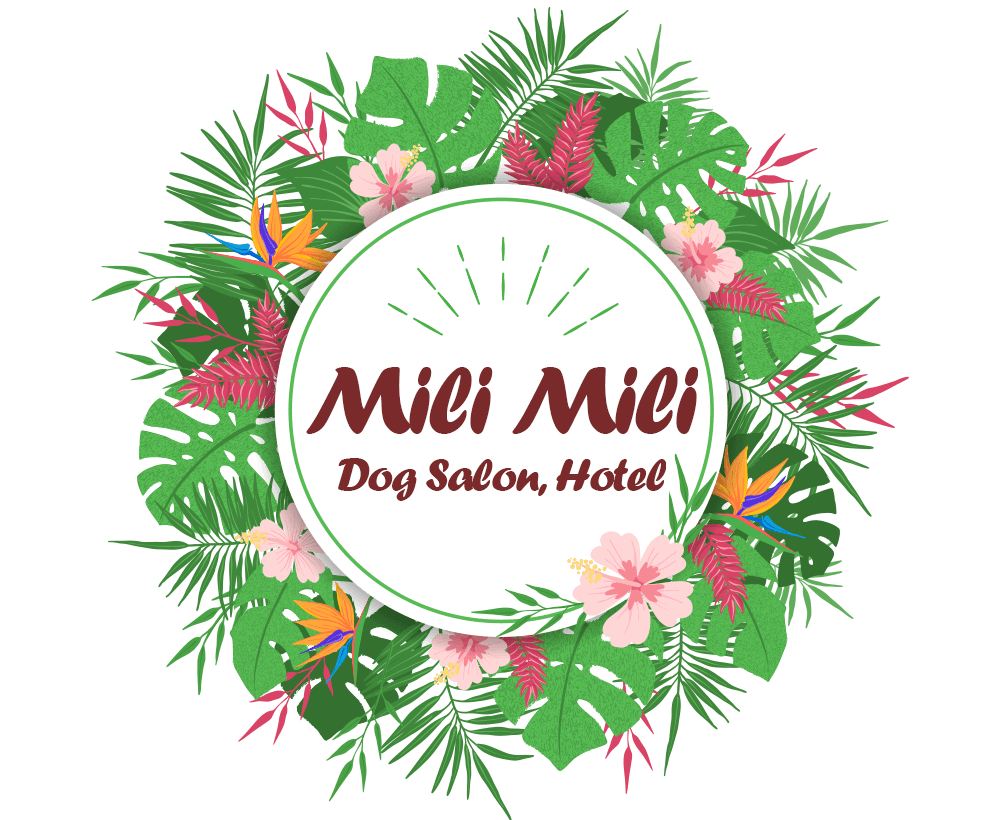 Dog Salon, Hotel Mili Mili